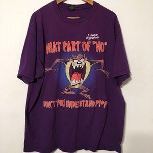 Vintage 1996 TAZ Warner brothers shirt t rap rock